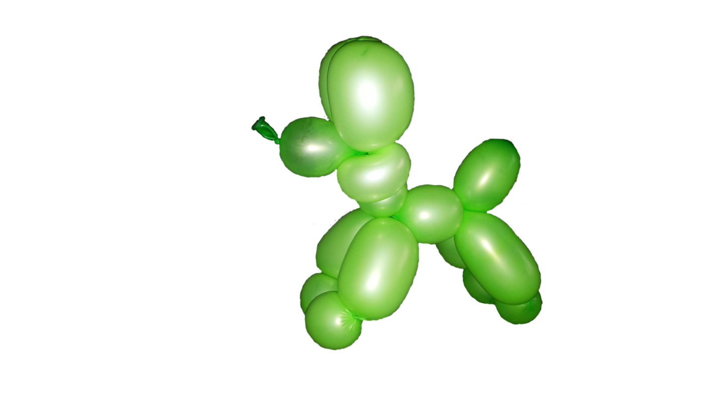 Ballonpudel